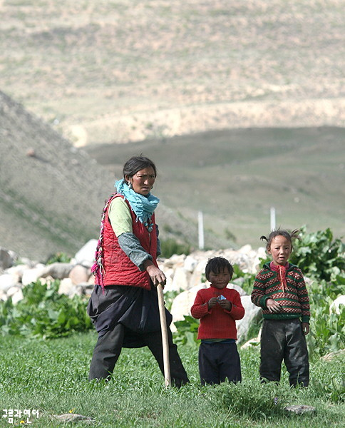 티베트 차마고도