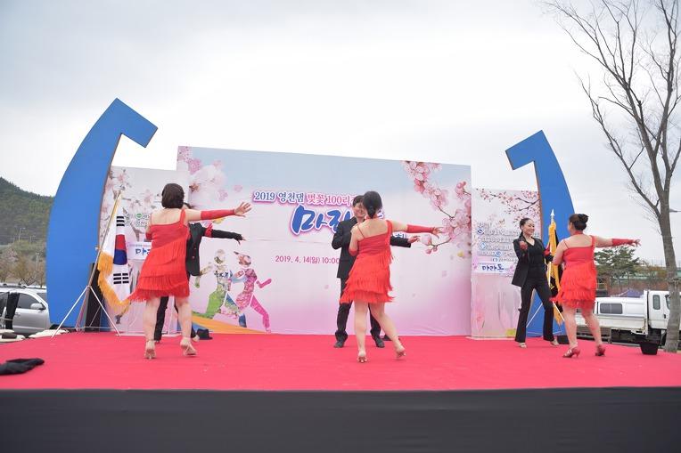 2019 영천댐 벚꽃마라톤대회